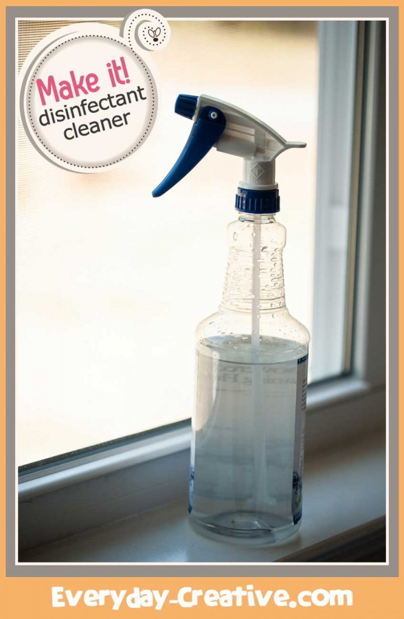 EC-aleesha-disinfectant-how-to-Pinterest